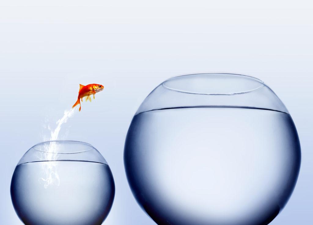 Digitale Geschäftsprozesse optimieren – Coaching für Unternehmer und Freiberufler